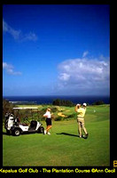 ACecil-17th-Kapalua Plantation Course-004