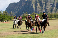 HNL POLO CLUB-6008