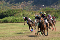 HNL POLO CLUB-6042