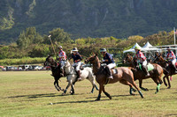 HNL POLO CLUB-6076