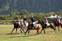 HNL POLO CLUB-6078