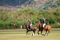 HNL POLO CLUB-6088