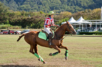 HNL POLO CLUB-6098