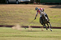 Hnl POLO CLUB-6162